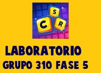 Laboratorio Grupo 310 Rompecabezas 5 Imagen